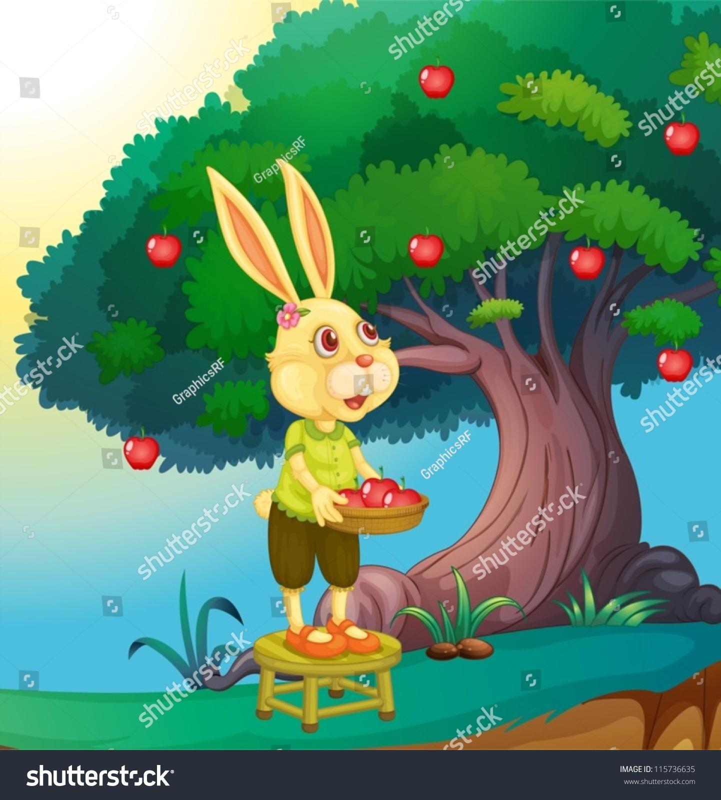 一只兔子的美丽的大自然-动物/野生生物-海洛创意()