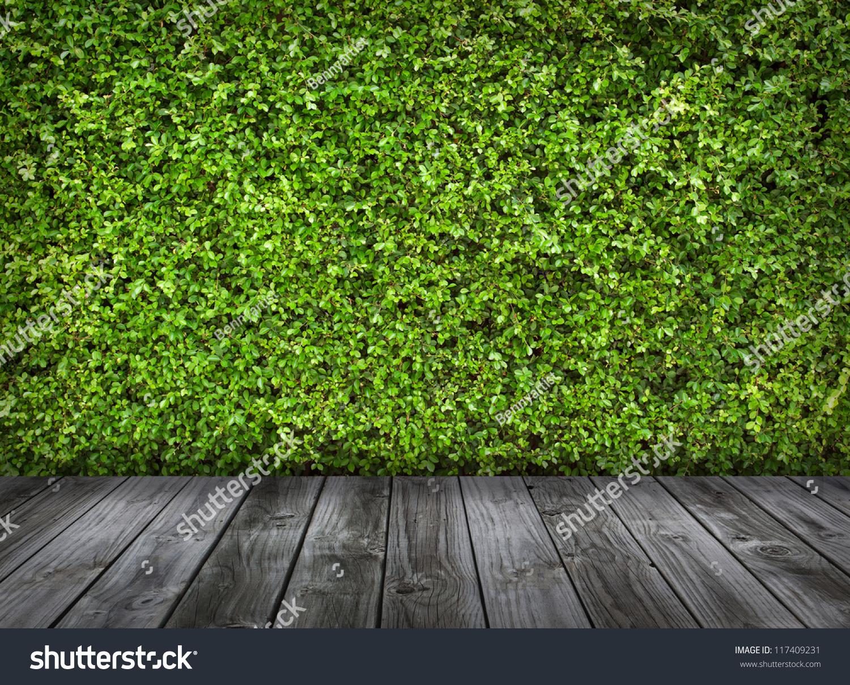 绿叶和旧木地板背景墙-背景/素材