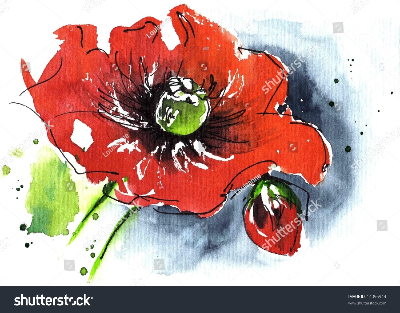 的手绘花卉水彩插图:红色poppie花和蓝色孤立在白色