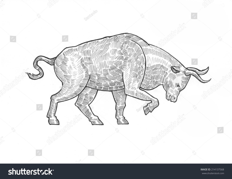 雕刻笔铅笔阴影孵化纸绘画风格牛证券交易所市场的概念.