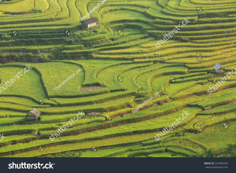 美丽的水稻梯田,东南亚-自然,公园/户外-海洛创意()-.