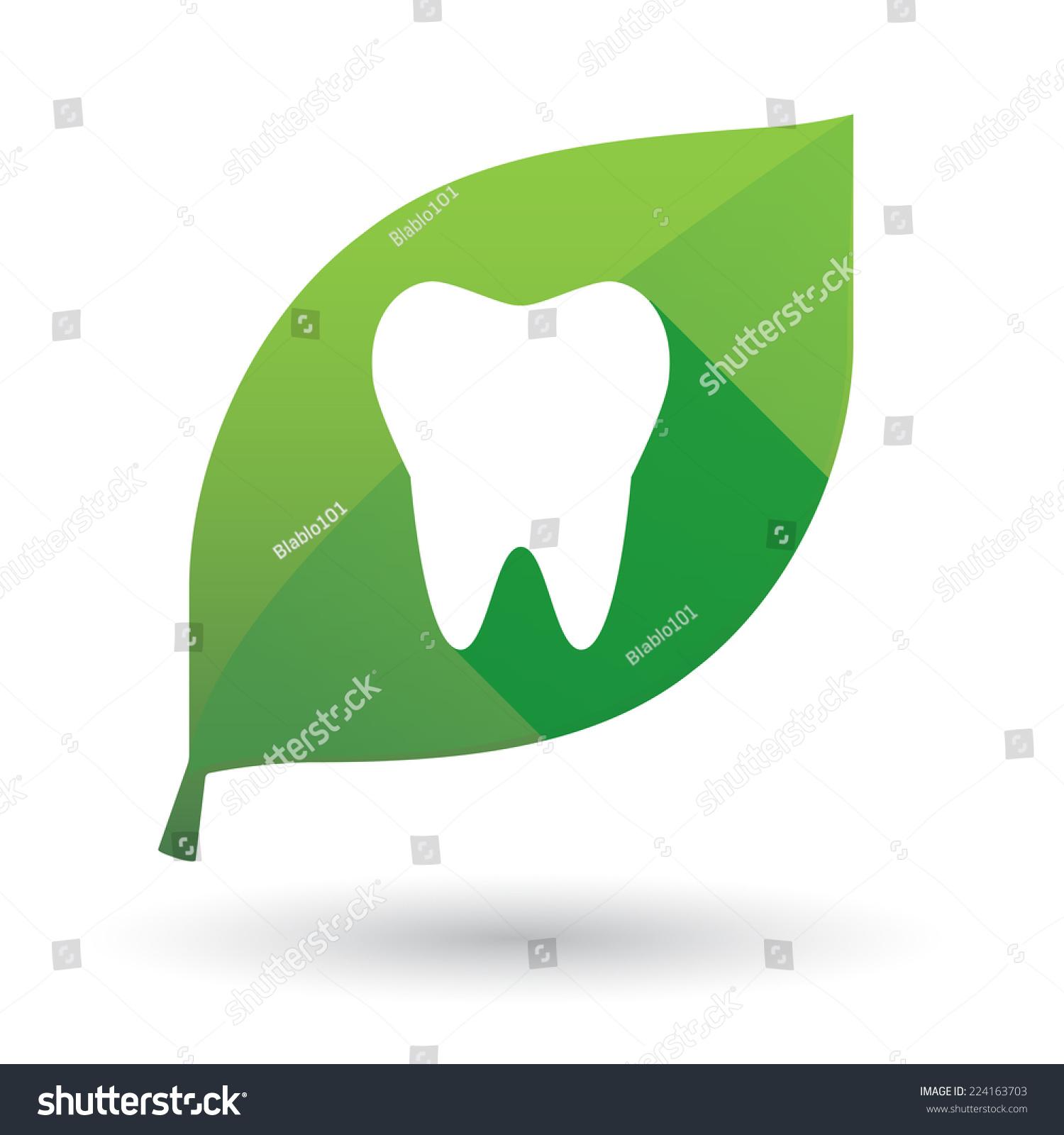 一个孤立的叶子图标的牙齿-自然,符号/标志-海洛创意