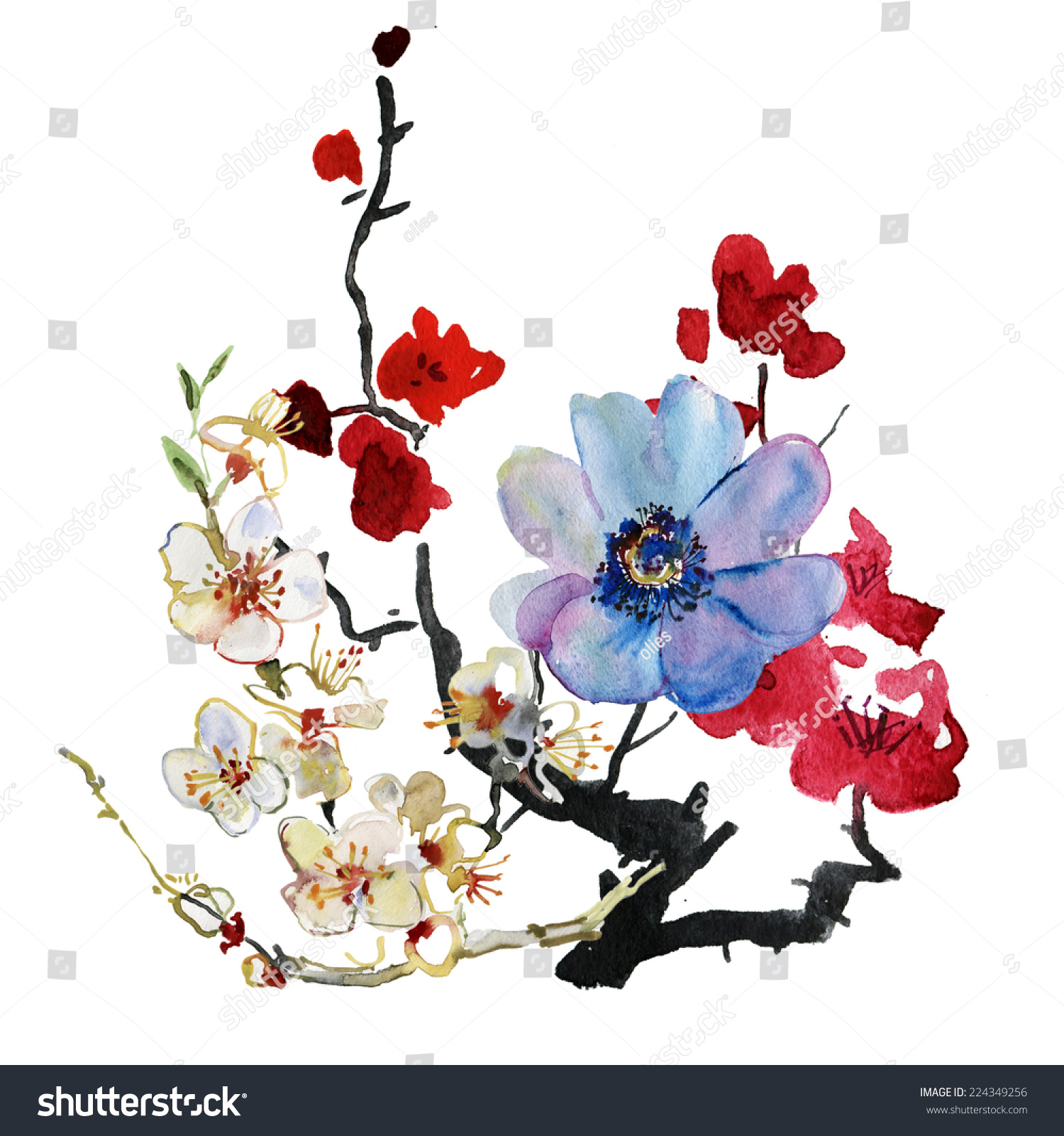 花.花环,水彩手绘插图