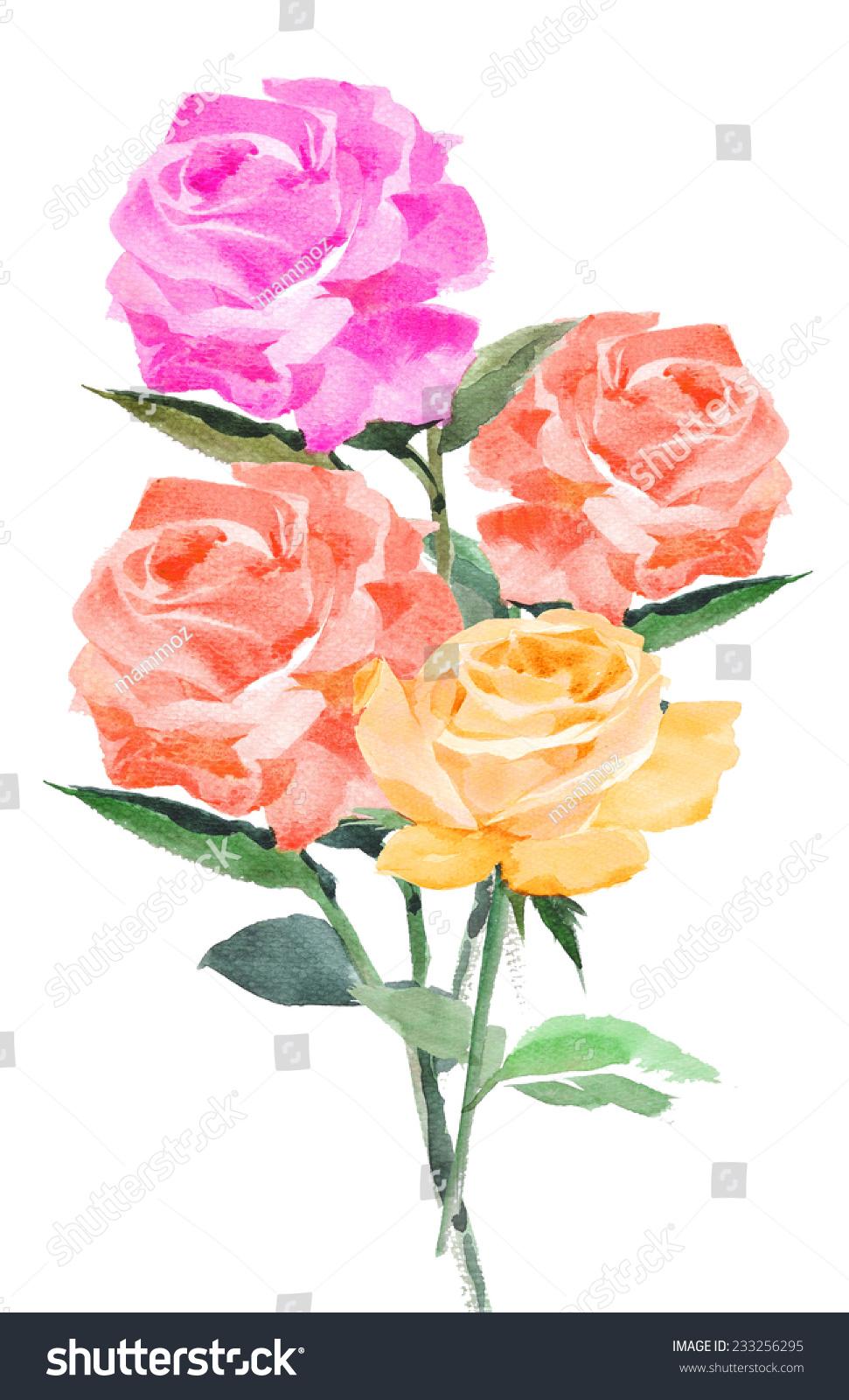 玫瑰水彩手绘背景