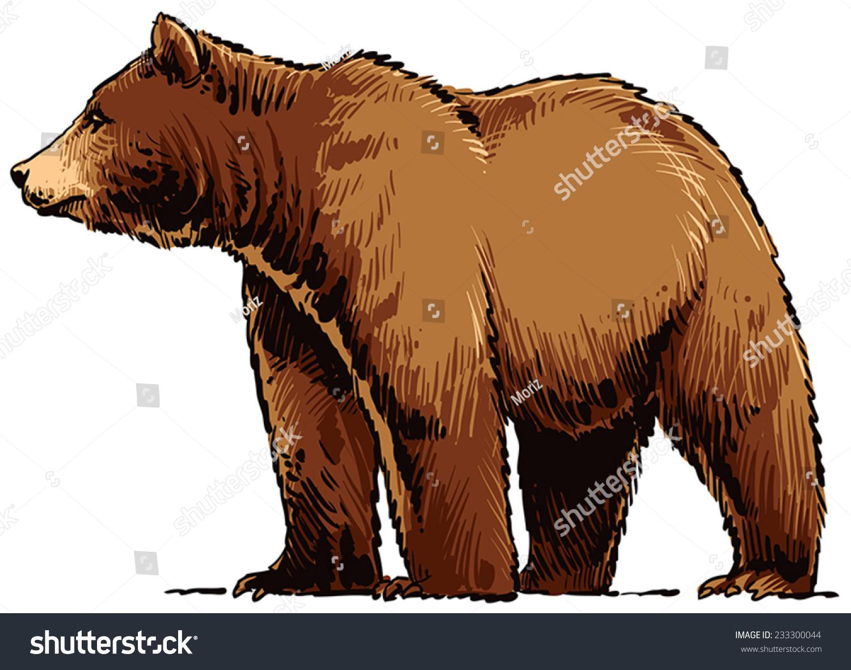 灰熊-动物/野生生物,自然-海洛创意(hellorf)-中国