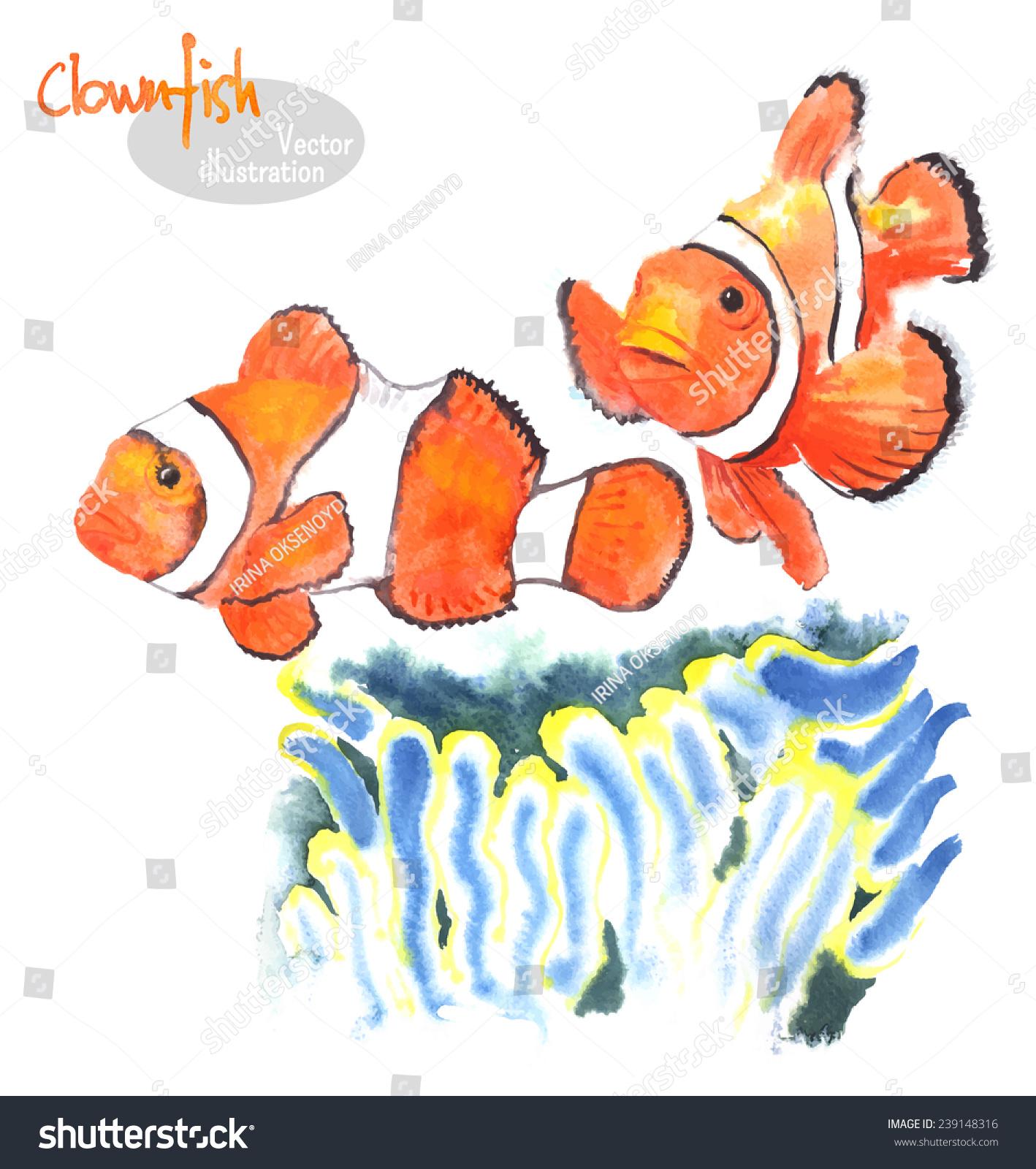 手绘水彩插图的海洋鱼类——小丑鱼或鱼——海葵附近