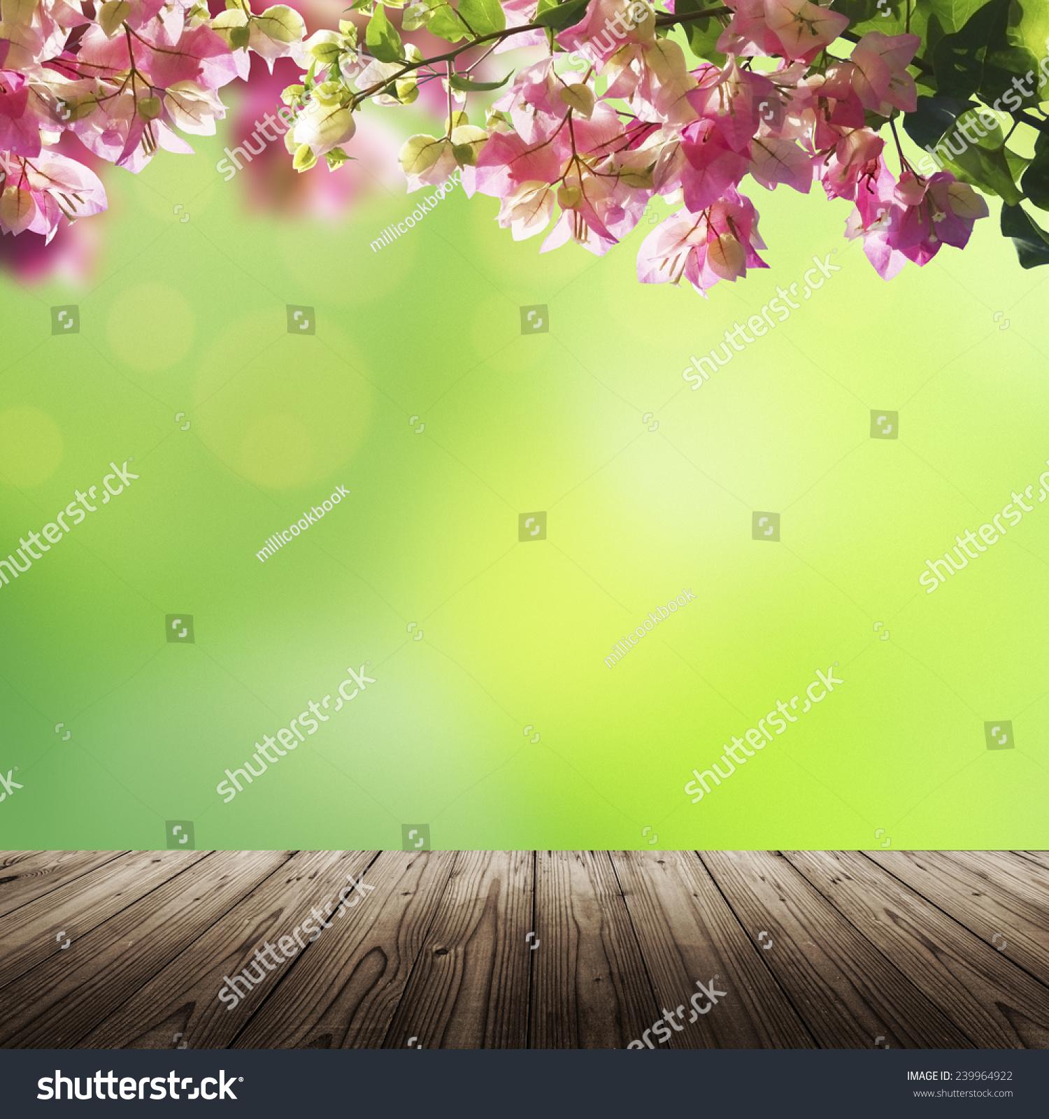盛开的花朵和绿色的夏天(春季)散景背景木桌上