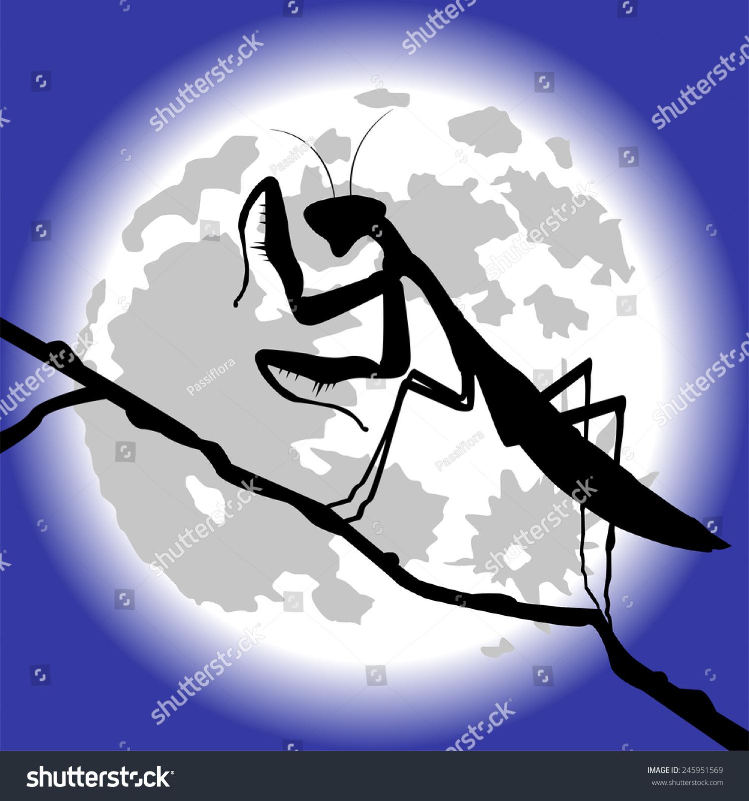 螳螂轮廓-动物/野生生物-海洛创意(hellorf)-中国