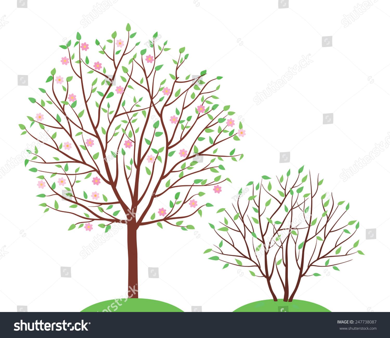 春天开花的树.孤立在白色背景上.矢量插图