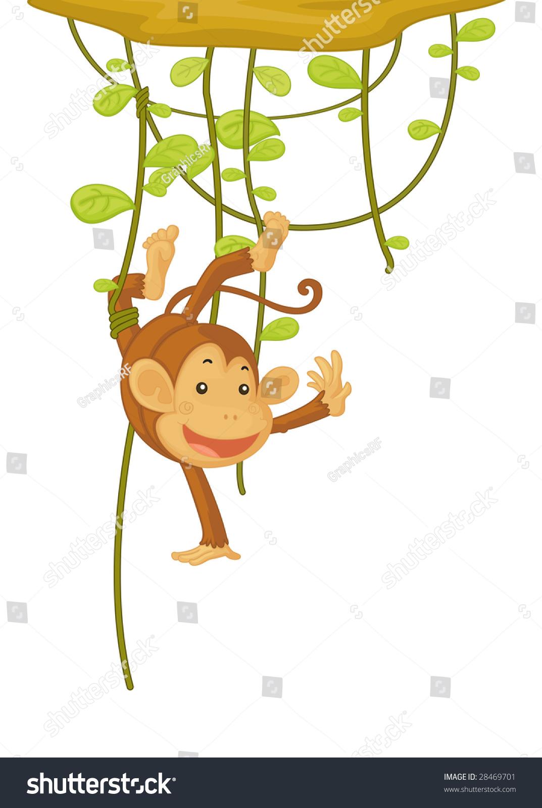 给动物设计名片猴子