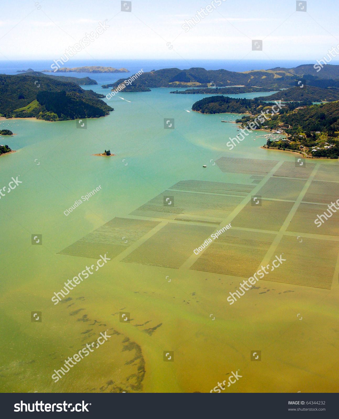 水产养殖的鸟瞰图whangaroa港湾,新西兰-公园/户外
