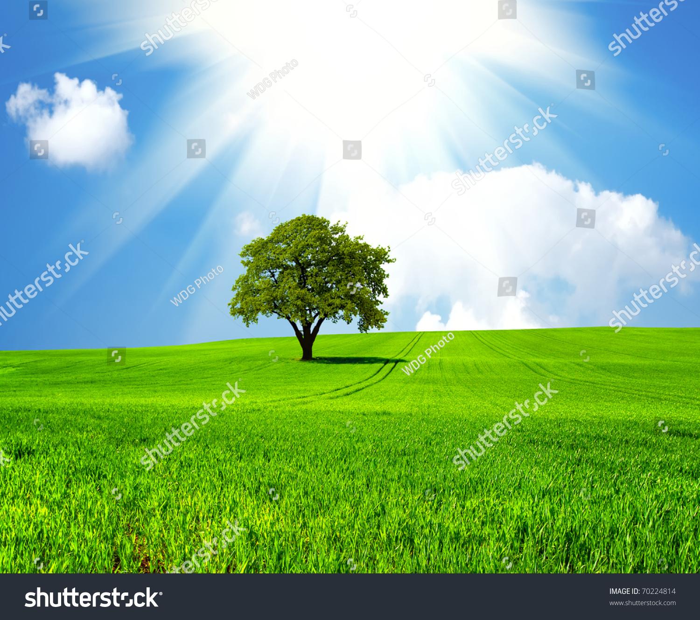 微信绿色自然风景图片