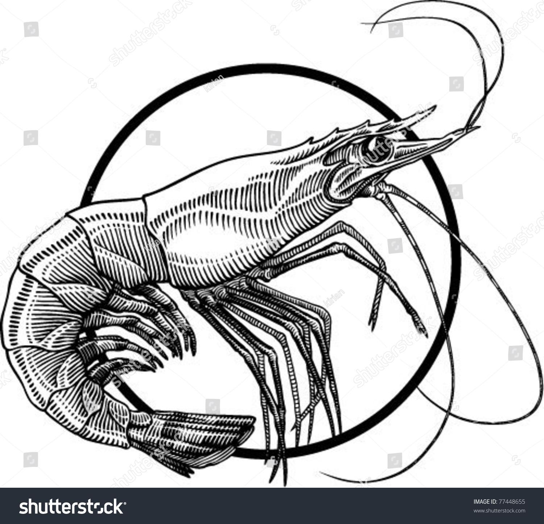 黑白简单手绘图动物