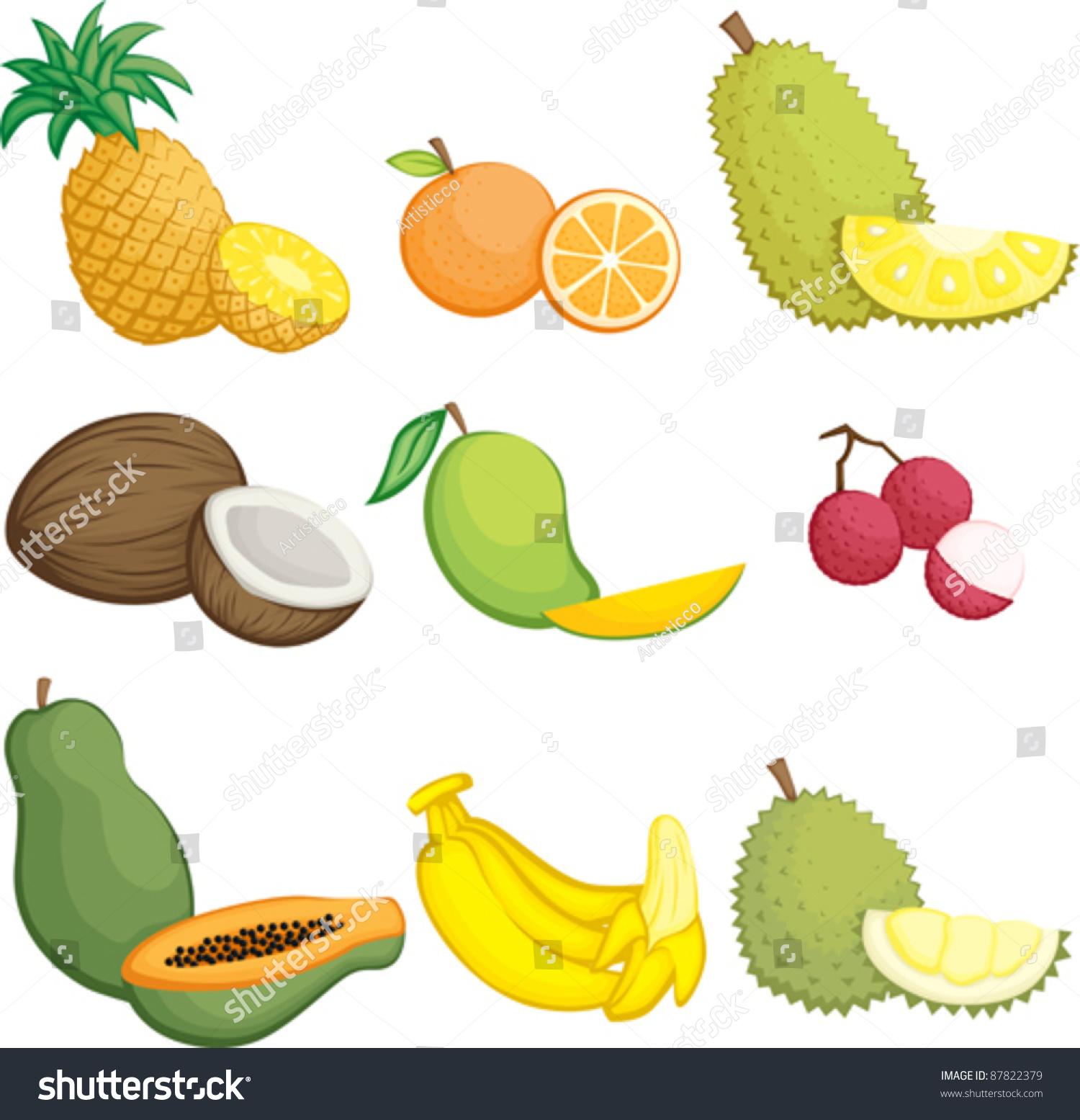 一个向量插图热带水果图标-食品及饮料