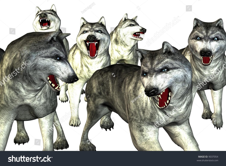 群狼(狼),吠叫和攻击和月亮.-物体,插图/剪贴图-海洛